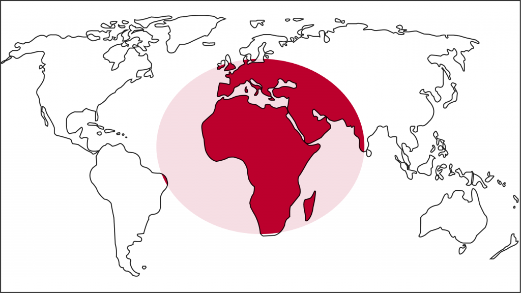 Laziali Worldwide, Japan
